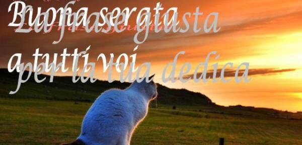 Foto E Frasi Di Buona Serata E Buona Notte La Frase Giusta Part 55