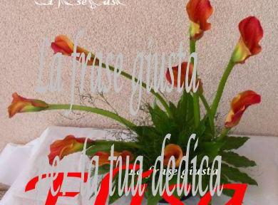 Foto E Frasi Di Compleanno E Onomastico La Frase Giusta Part 43